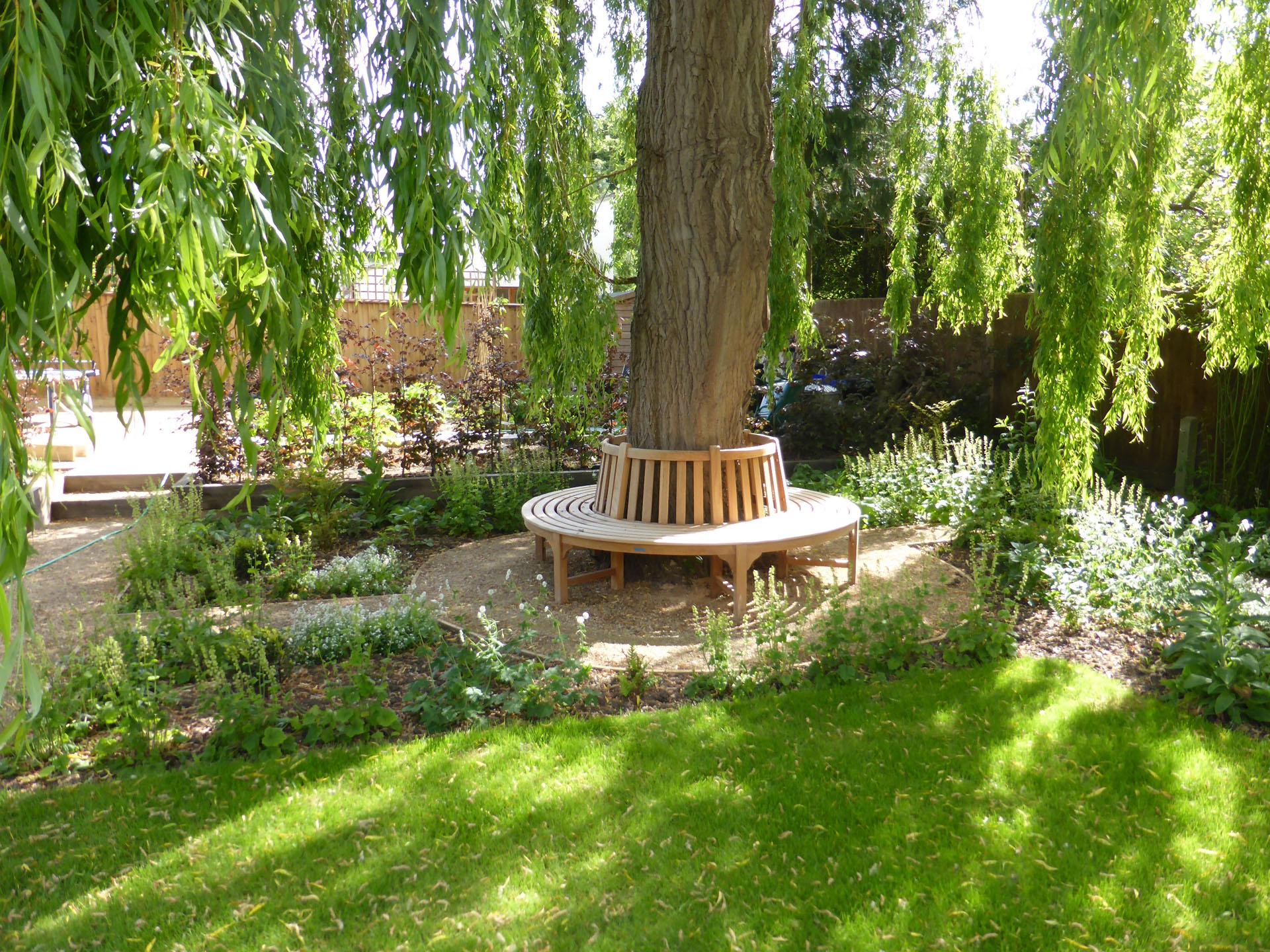 Circular Tree Bench, Cambridgeshire
