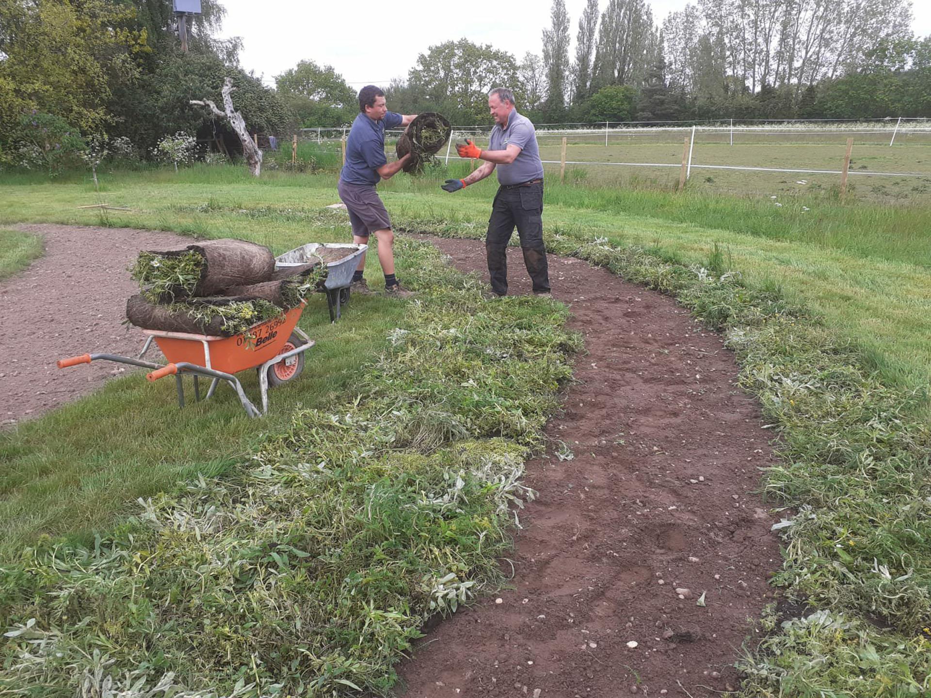 Team Laying wildflower turf